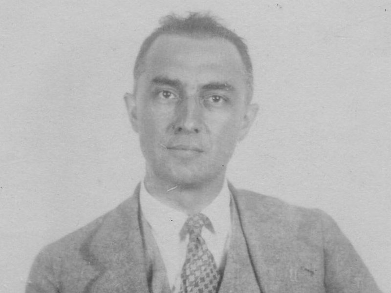 essays on the red wheelbarrow by william carlos williams